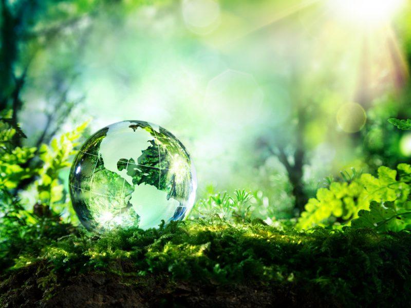 afvalvrij zero waste trakteren inspiratie basisschool kinderen meesters en juffen