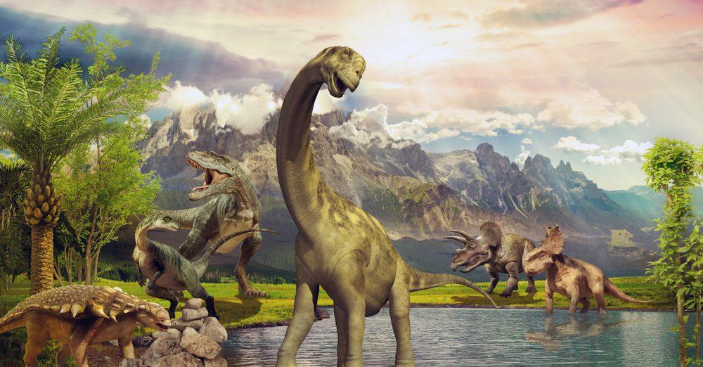 home schooling thuis les thema dino lockdown dinosaurussen weetjes inspiratie idee peuter kleuter groep 3