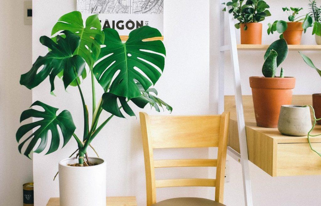 tips duurzame decoratie in huis